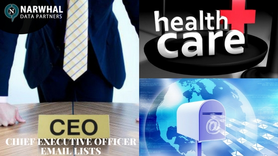 CHIEF EXECUTIVE OFFICER EMAIL LISTS