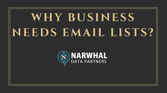 Why Business Needs Email Lists_