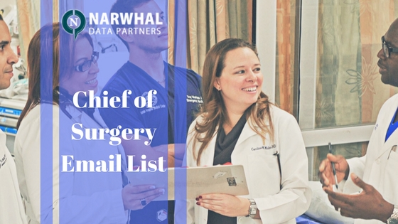 Increase your business revenue without growing your sale team with Chief of Surgery Email List from Narwhal Data Partners. Reach global customer at right time