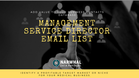 Management Service Director Email List