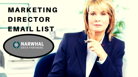 MARKETING DIRECTOR EMAIL DATABASE