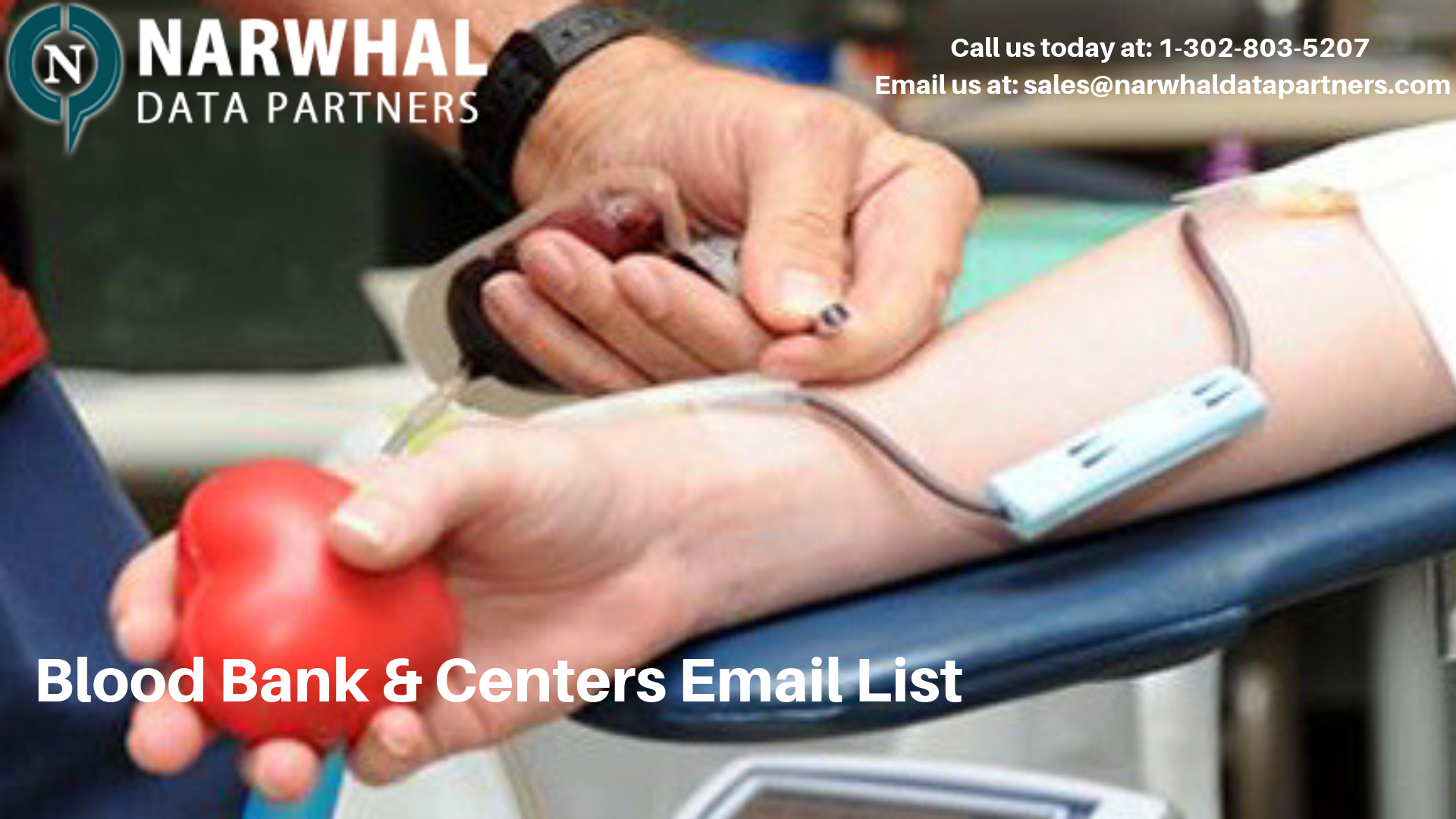 http://narwhaldatapartners.com/blood-bank-and-centers-email-list.html