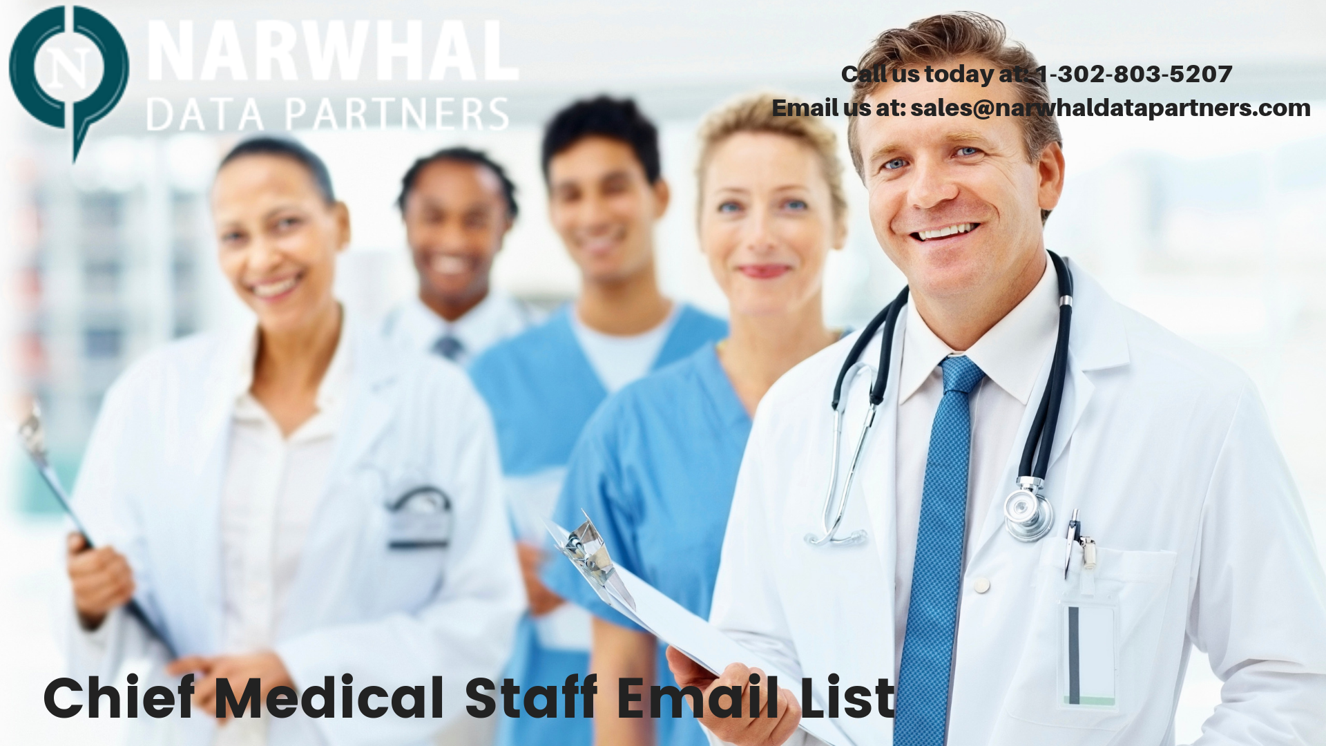 http://narwhaldatapartners.com/chief-medical-staff-email-list.html